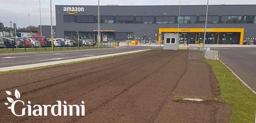 Łąka kwietna dla Amazon w Pawlikowicach